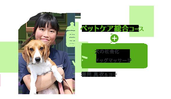 ペットケア総合コース+犬の社会化、ドッグマッサージ 堀岡真衣&ヨナ