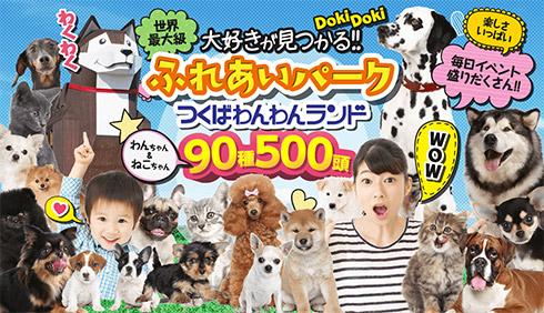つくばわんわんランド 90種類500頭 日本最大級犬猫のテーマパーク 公式サイトはこちら