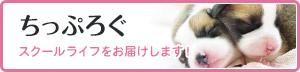 つくば国際ペット専門学校公式ブログ ちっぷろぐ スクールライフをお届けします!