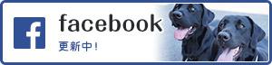 つくば国際ペット専門学校facebook