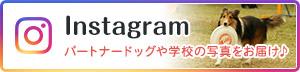 つくば国際ペット専門学校Instagram パートナードッグや学校の写真をお届け♪