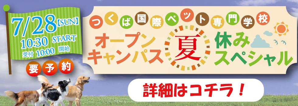 2019.7.28 夏休みスペシャル