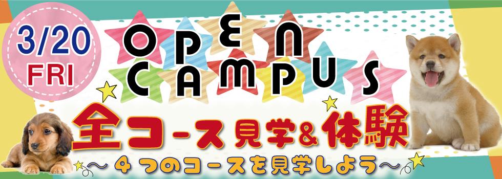 2020.3.20 オープンキャンパス日程
